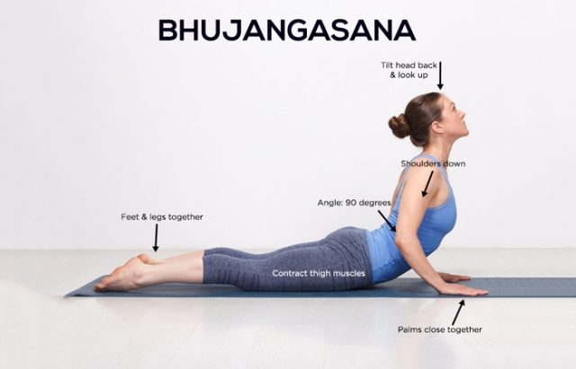 Best Yoga Asanas to reduce Belly Fat - Bhujangasana