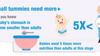 6 Month Baby Nutrition Needs