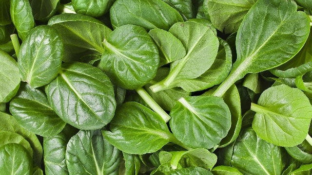 Super Foods That Every Woman Needs - Spinach
