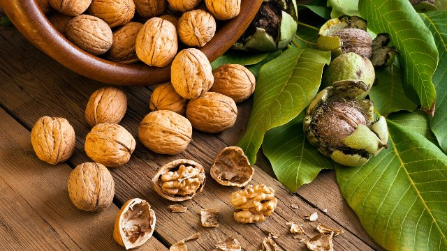 Super Foods That Every Woman Needs - Walnuts
