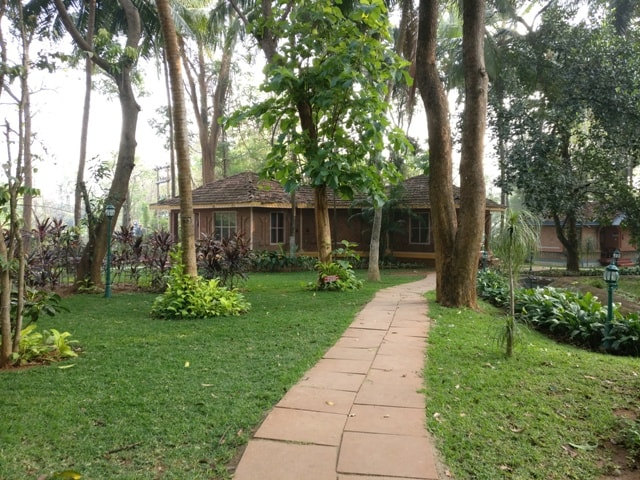 Cottages at Kairali Healing Village Spa and Resort 3