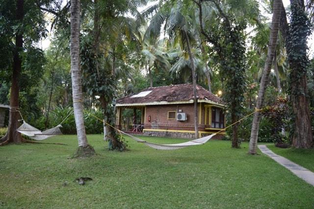 Cottages at Kairali Resort 3