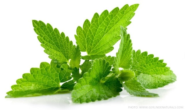 Home Remedies to prevent Gas and Bloating - Peppermint
