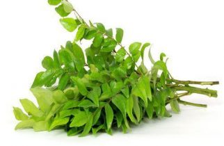 Curry Leaves for hair fall